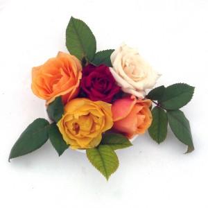 Perfume Kit The Romantics - Rose and Jasmine